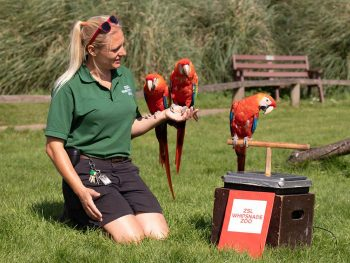 ZSL Whipsnade Zoo Annual Weigh In